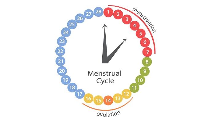 Aplicaciones Para Control de la Ovulación