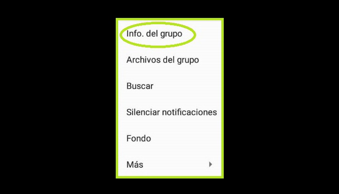"""Elige la opción """"Información del grupo"""""""